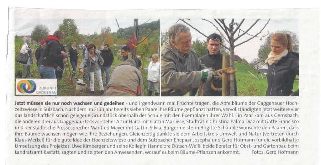 Homepage Presse Hochzw 001