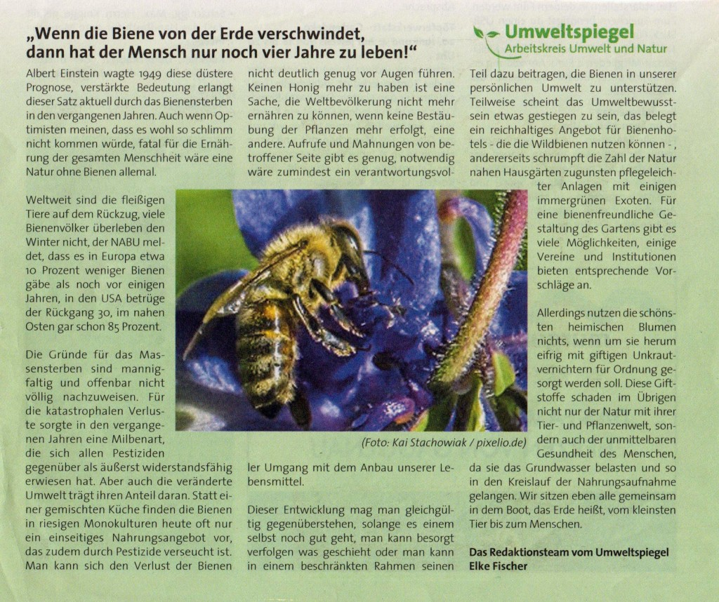 Umweltspiegel Bienensterben 001